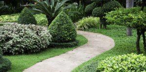 amenagement-jardin