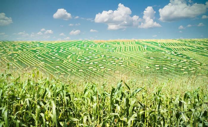 collecte données agricole