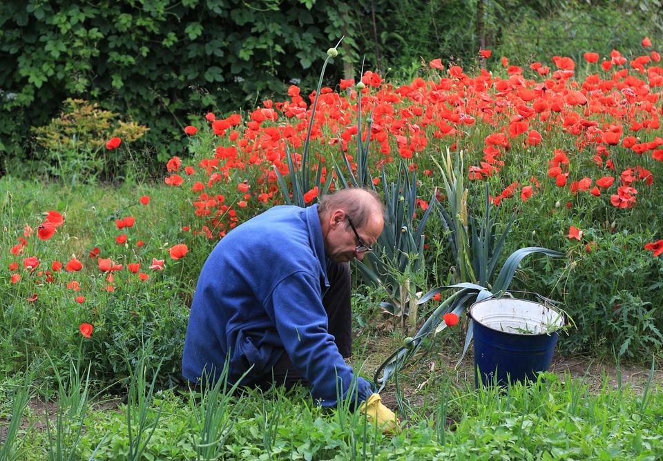 deserbage jardin que faut il utiliser