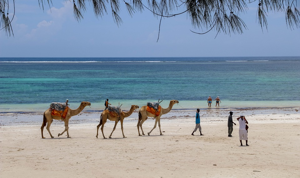 Des moments d'aventures et de découvertes lors des vacances au Kenya